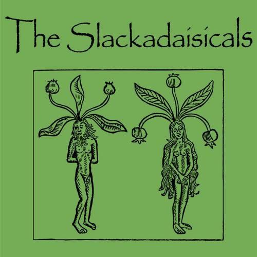 The Slackadaisicals | Melbourne, FL