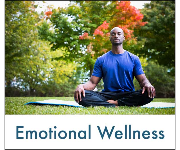 Emotional.Wellness.630.white.jpg