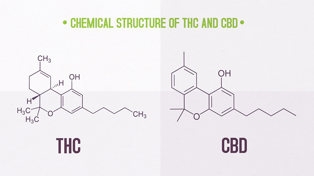 thc-and-cbd-chemical-structure.jpg
