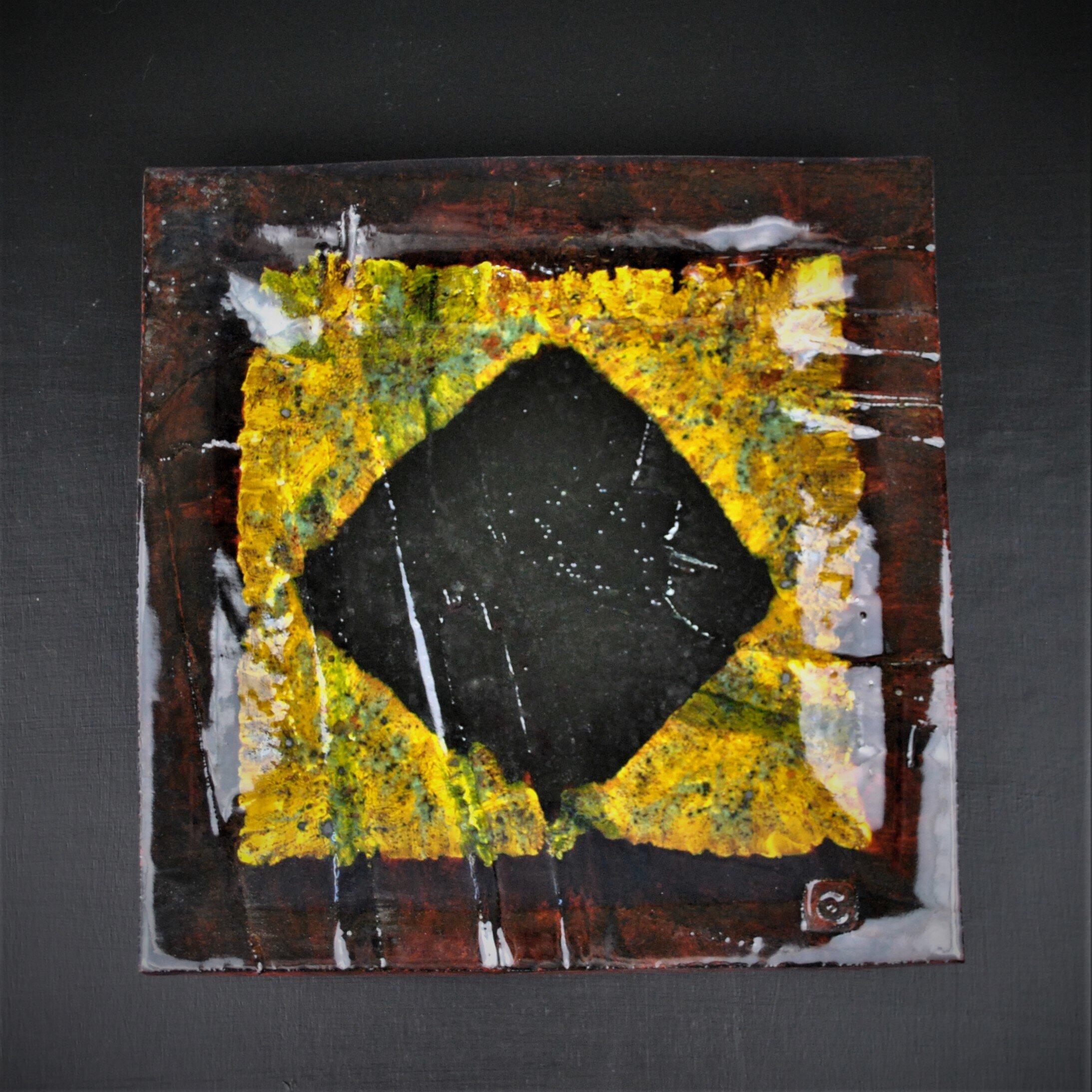 Mike Cain 2018 Brown diamond on yellow against black. (Square edit) DSC_6245 (2).JPG