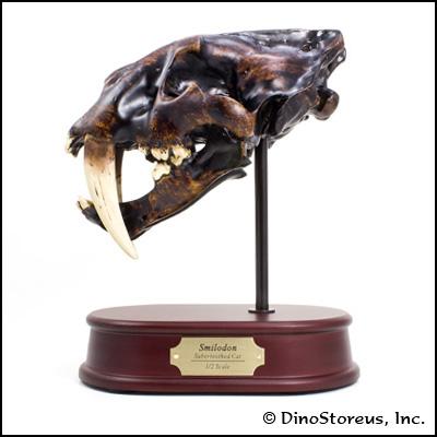 smilodon-skull-lg.jpg