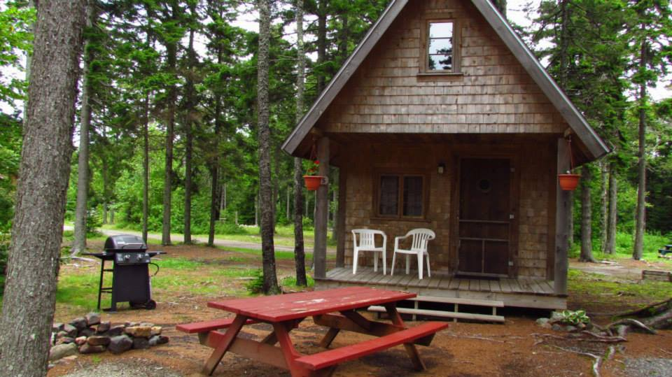 cabins come with a microwave, coffee-maker, heater & fridge inside and grill, fire-ring and water outside.