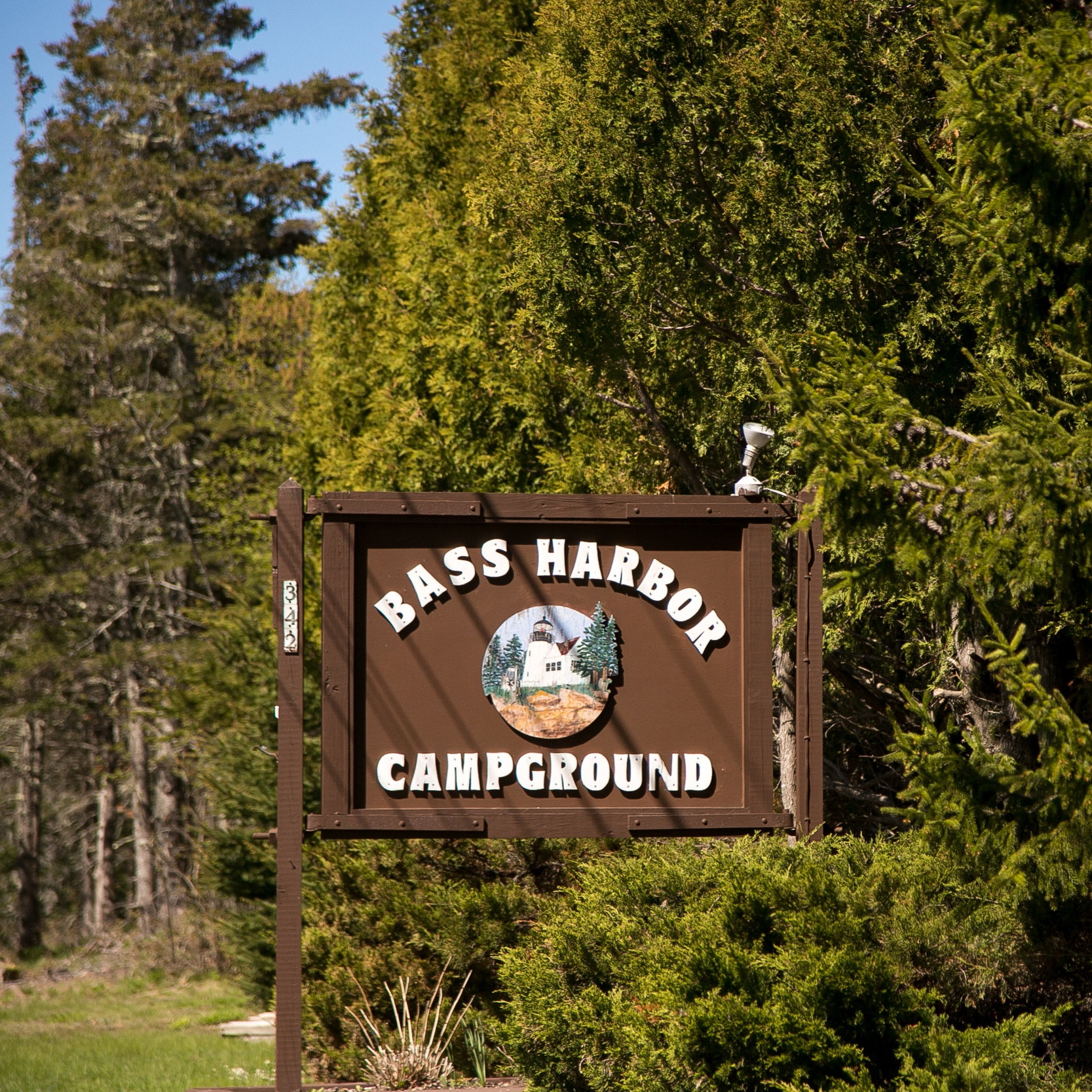 A rustic family campground in the heart of Acadia National Park