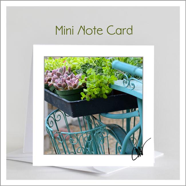 Mini-Note-Mock-Up-SS-v2.jpg