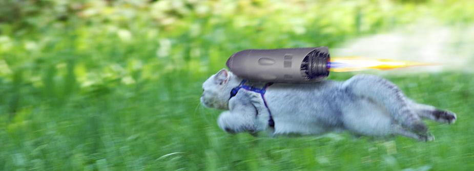 cat-blog-rocket.png