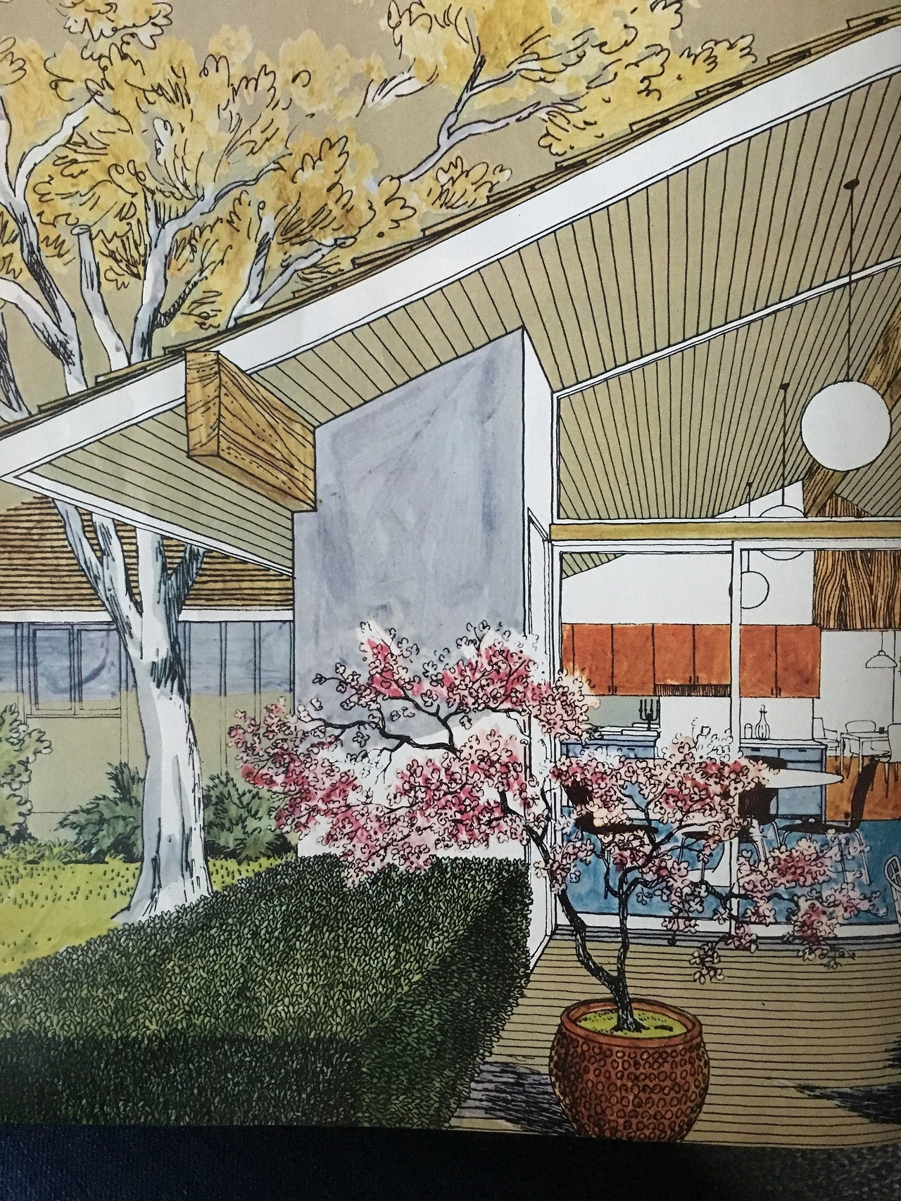 From Better Homes and Gardens. August 1966