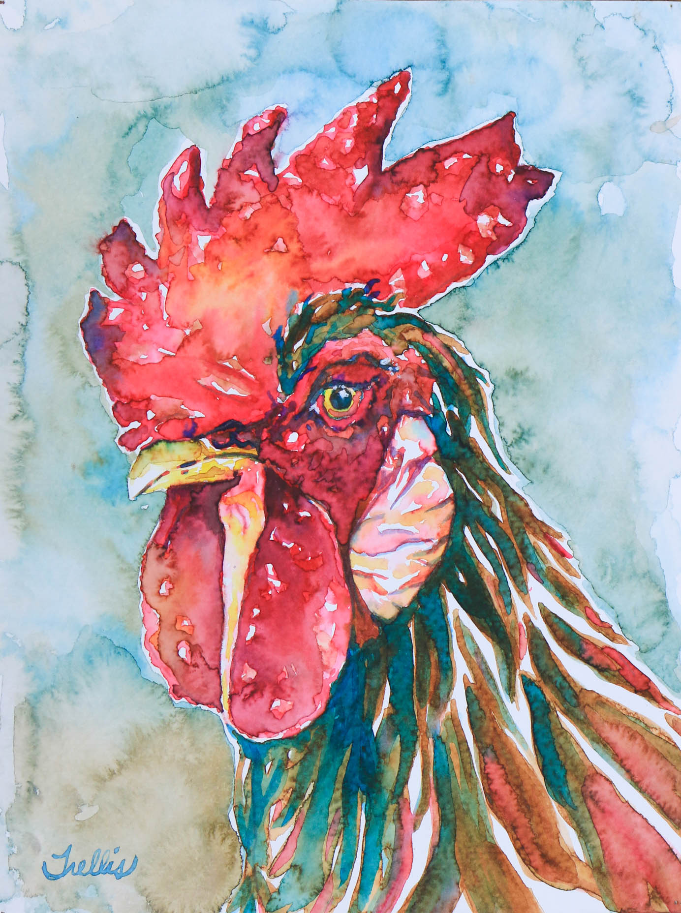 """Rooster 1""    (9""x12"") Watercolor."