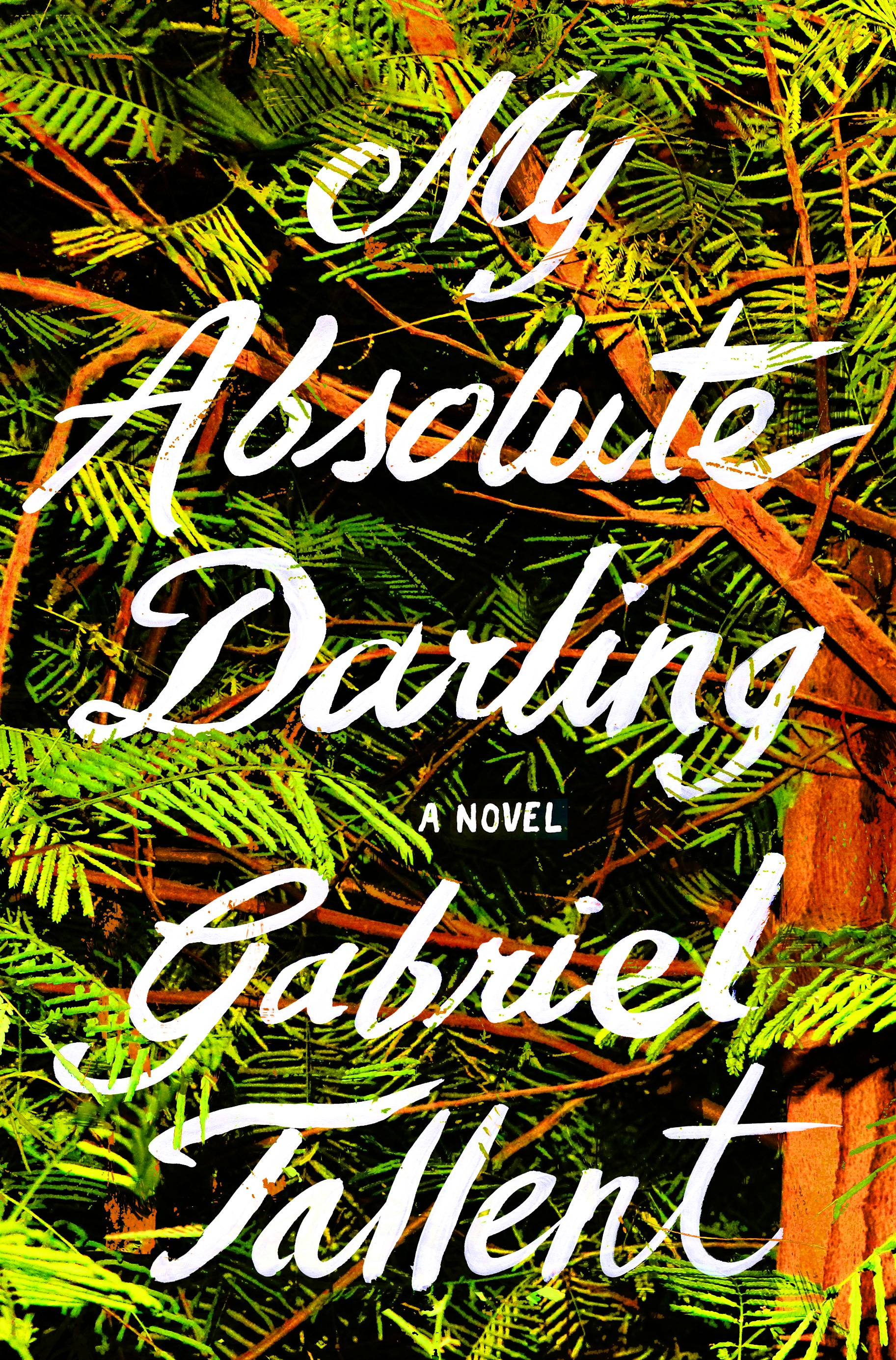 My Absolute Darling - A brilliant and immersive, all-consuming read about one fourteen-year-old girl's heart-stopping fight for her own soul.Amazon • B&N • BaM • IndieBound •  Gallery Bookshop • The King's English