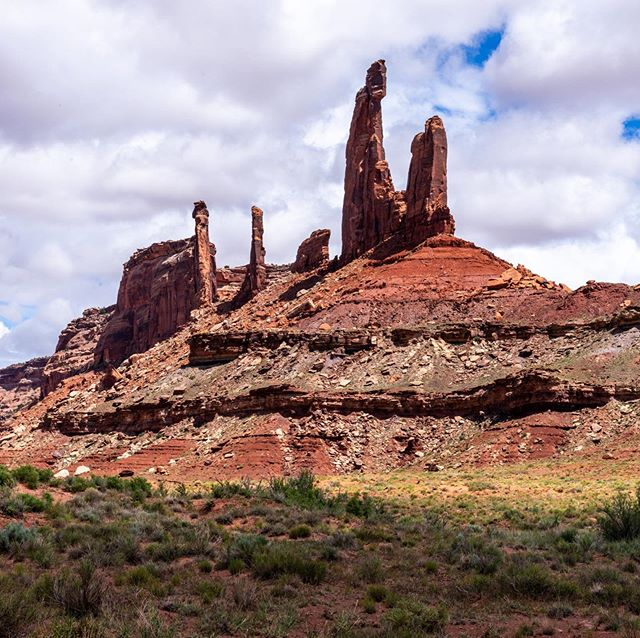 @hattiesweethattie and I drove down into the #whiterimtrail on a rest day in Moab to scout out the routes on Moses, the most prominent tower you see here. The slender tower behind is called Zeus, and its route is Sisyphus (5.11 R), one of the many desert routes I'll never tick. The trail was gorgeous, with huge stands of tamarisk beside the river, and blooming fields of primrose, scorpionweed, prickly pear, fishhook cactus and woody aster. We're headed back as soon as we can. #utah #moab #deserttowers