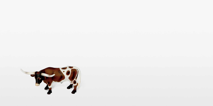 COW AND NOTHINGNESS