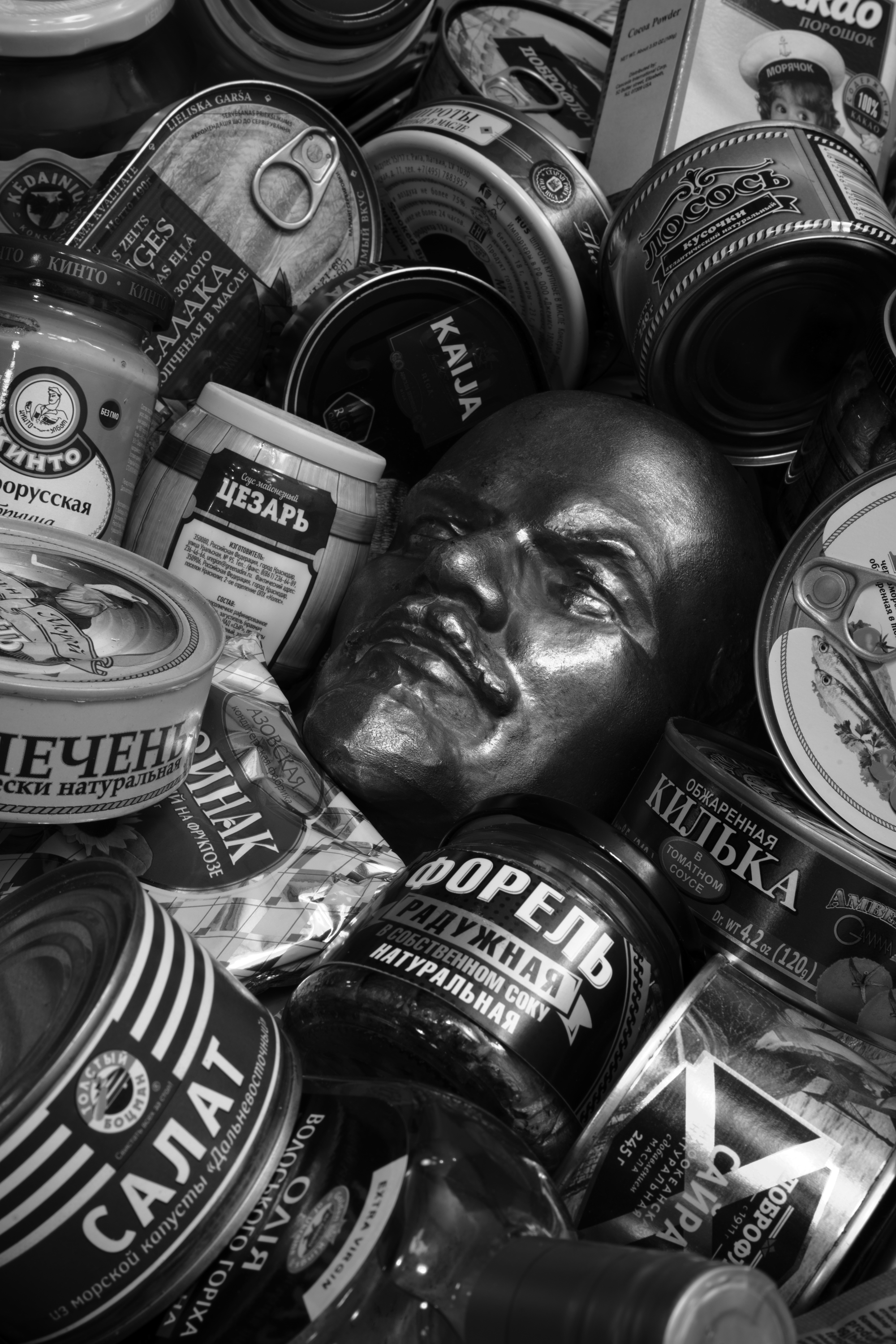 Still Life with Lenin and Russian Groceries