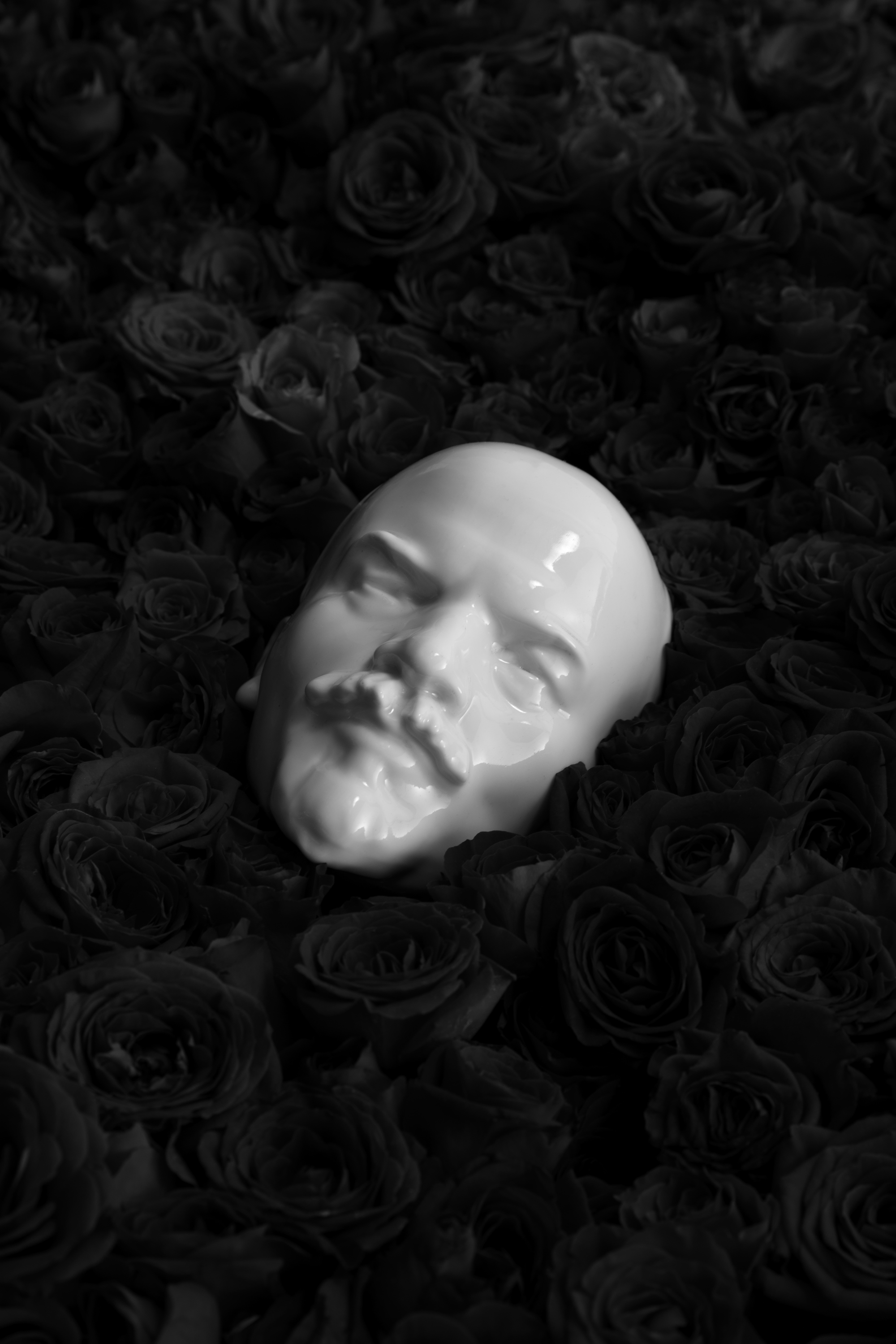 Still Life with Lenin and Dead Roses