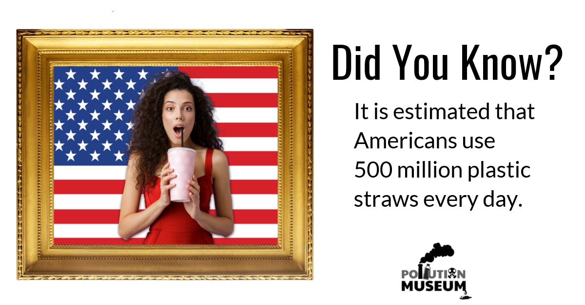 Pollution Museum frame text straw girl flag.jpg