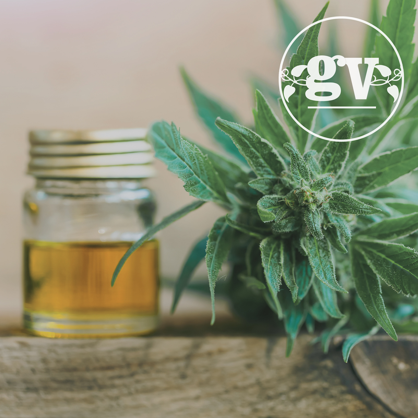 Dear Catherine: - I have heard that you sell CBD oil at the store, can you tell me more about it? With the legalization of marijuana, I think we're all wondering the difference. I experience pain and inflammation often and am wondering if it will give me relief without the high!—A Curious Canadian