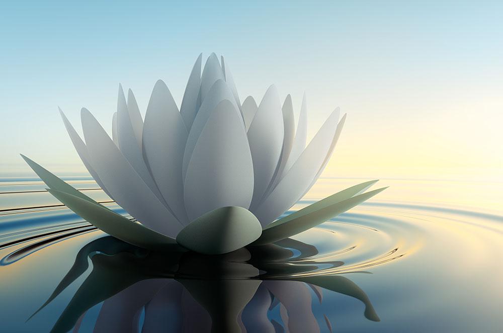 opening-to-larger-self-doralee-grindler-katonah-psychologist-living-forward-whole-original.jpg
