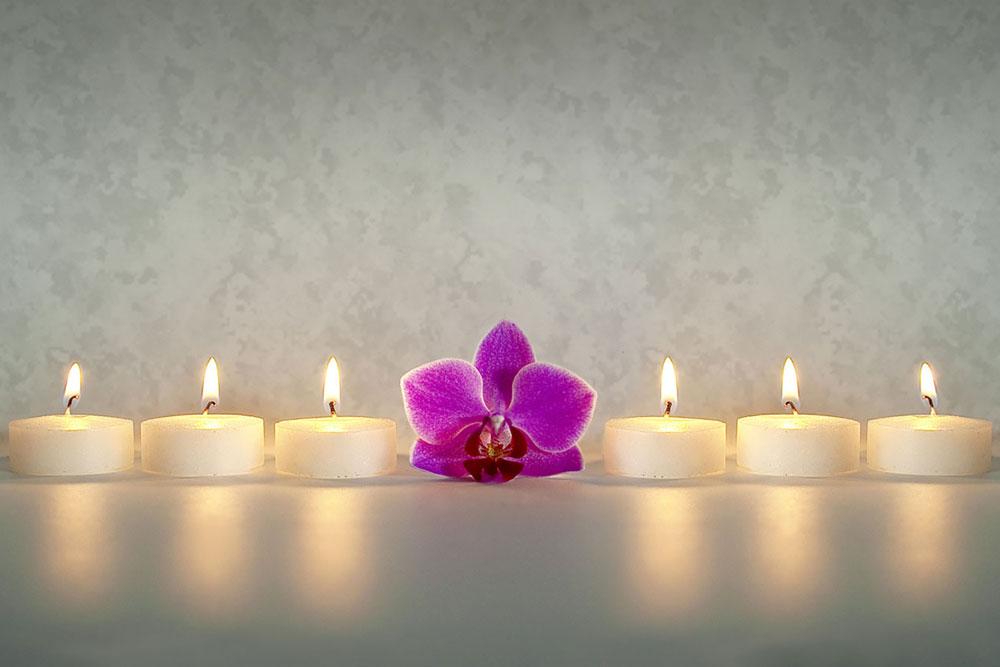 mind-body-flower-healing-doralee-grindler-katonah-psychologist-living-forward-whole-v2.jpg