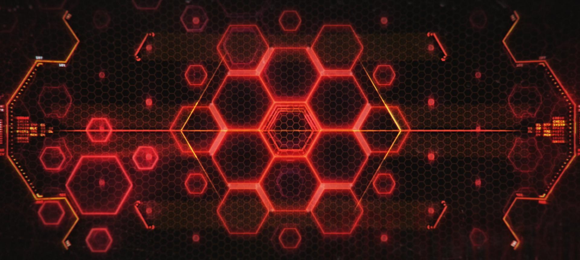 BumbleBee_reel_05022019+(00299).jpg