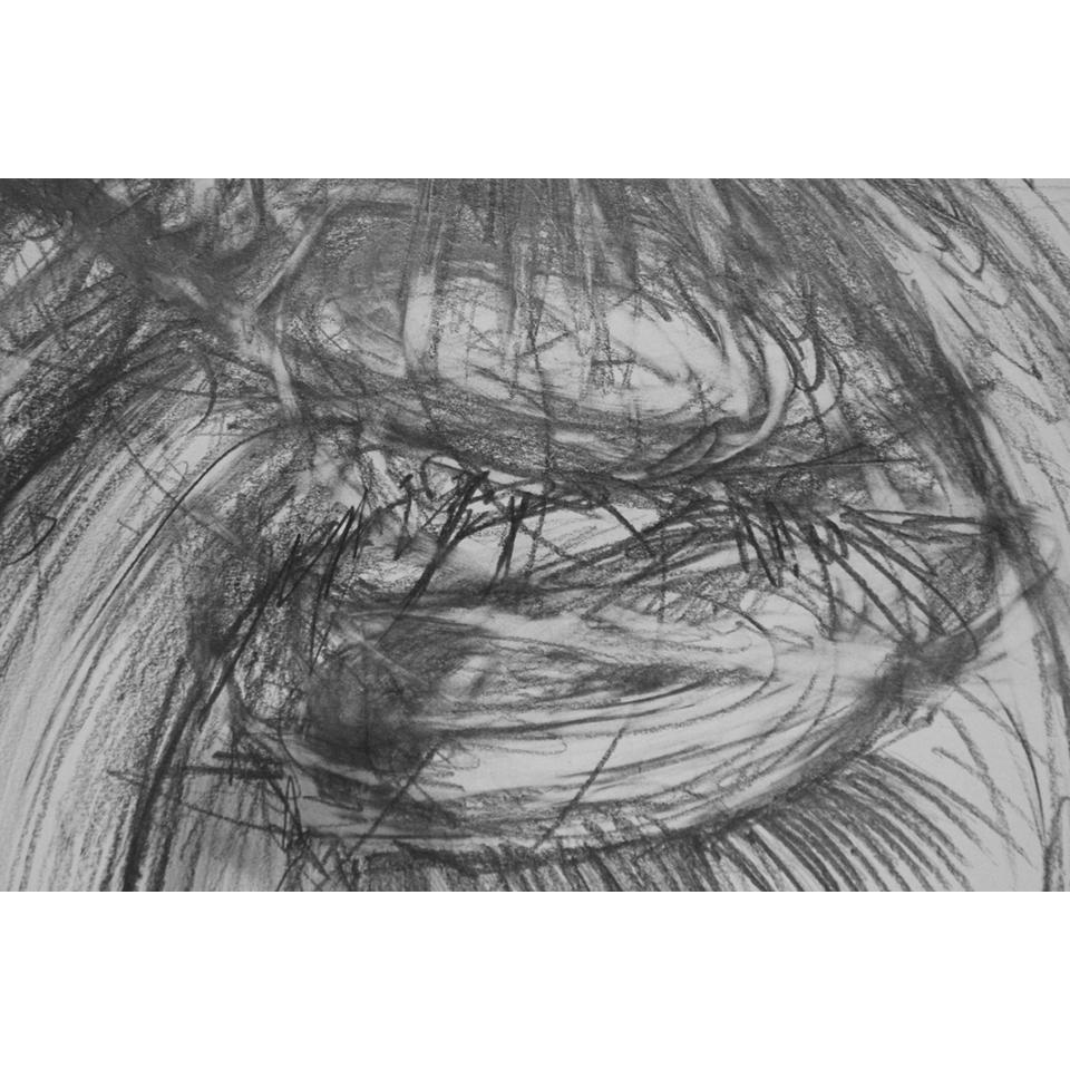 Palm/Paquette Detail , 2016