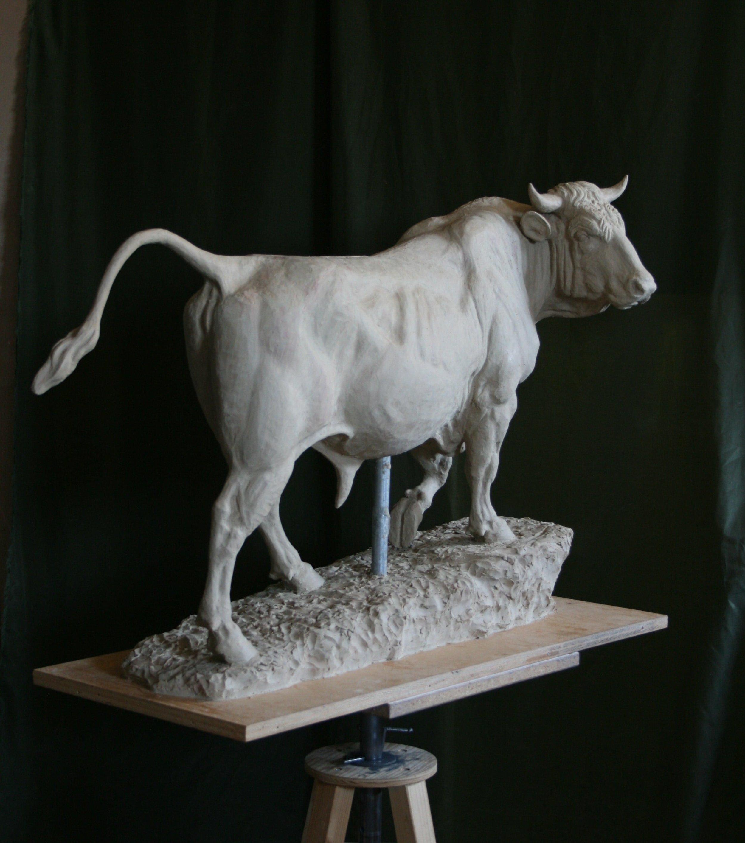 bull isidore bonheur 031-min.JPG