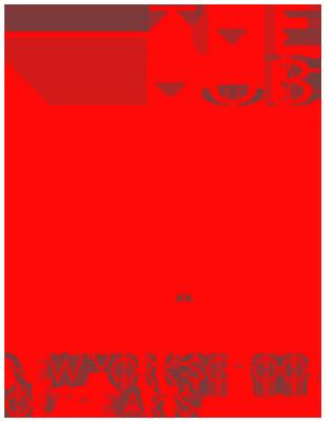 The-Hub-NYSA-Logo-red-crop sm.png
