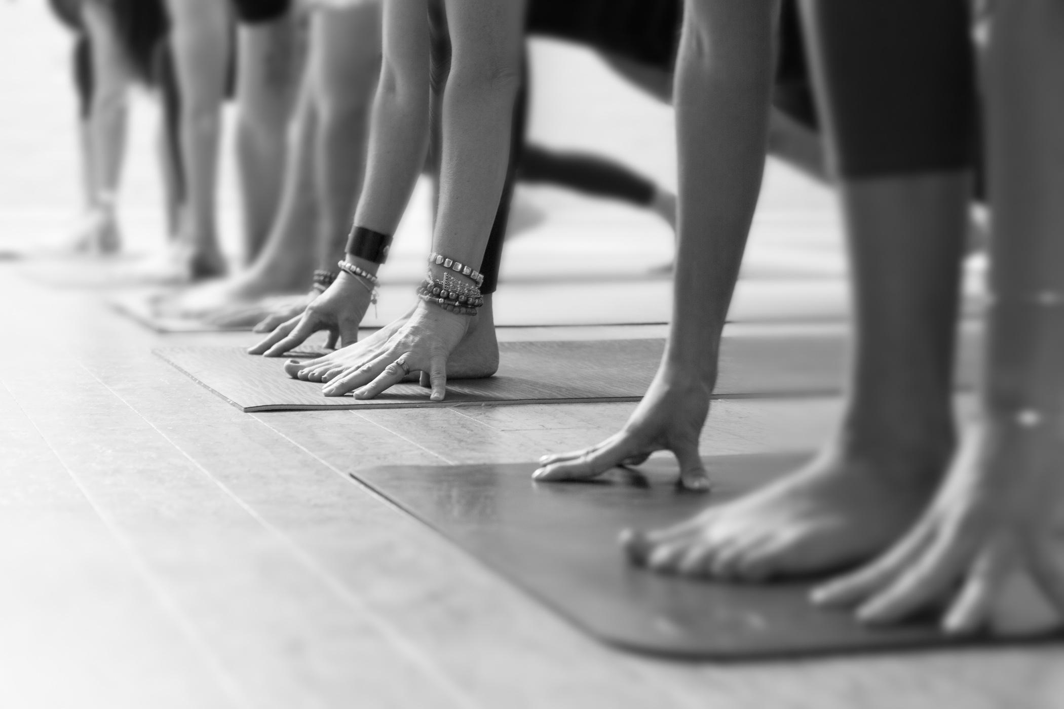 forward fold yoga.jpg