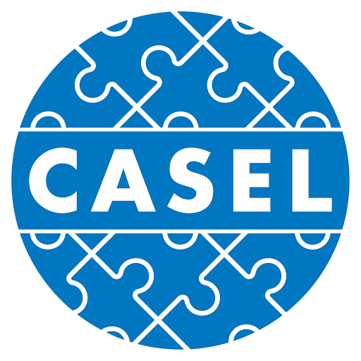 Collaborative for Academic, Social, and Emotional Learning (CASEL) - This one is for all my school teacher friends out there. Yes, you can incorporate SEL into your classroom without it being 'another thing' to get to. It CAN be done. CASEL can help.