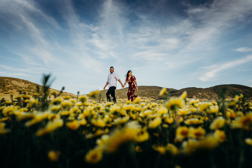 julian-cuyamaca-flowers-field-engagement-california-top-shelf-photo-1.jpg