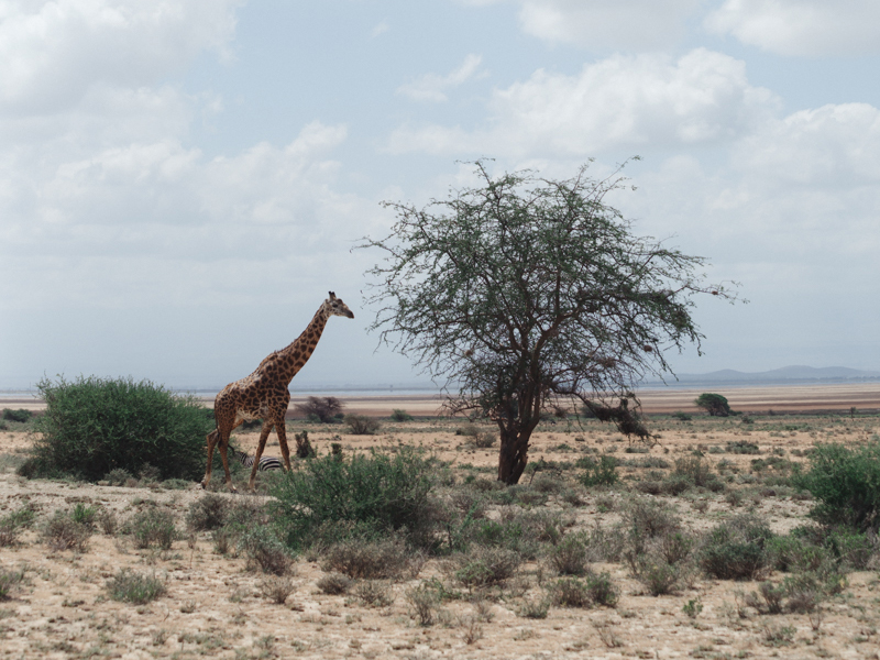 TRAVEL_KENYA_2016_LOW-58.JPG