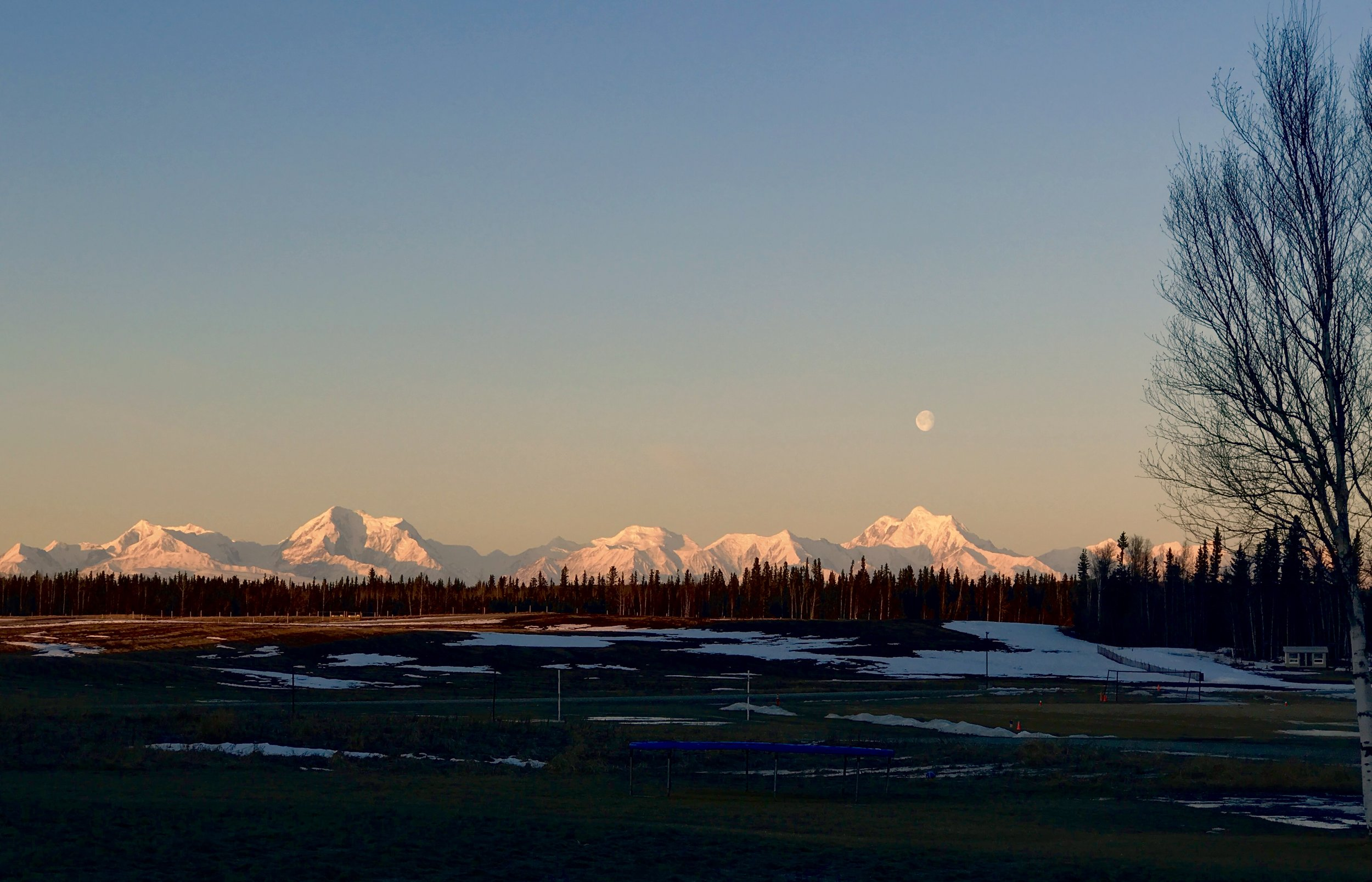 Moonrise over Mt Hayes