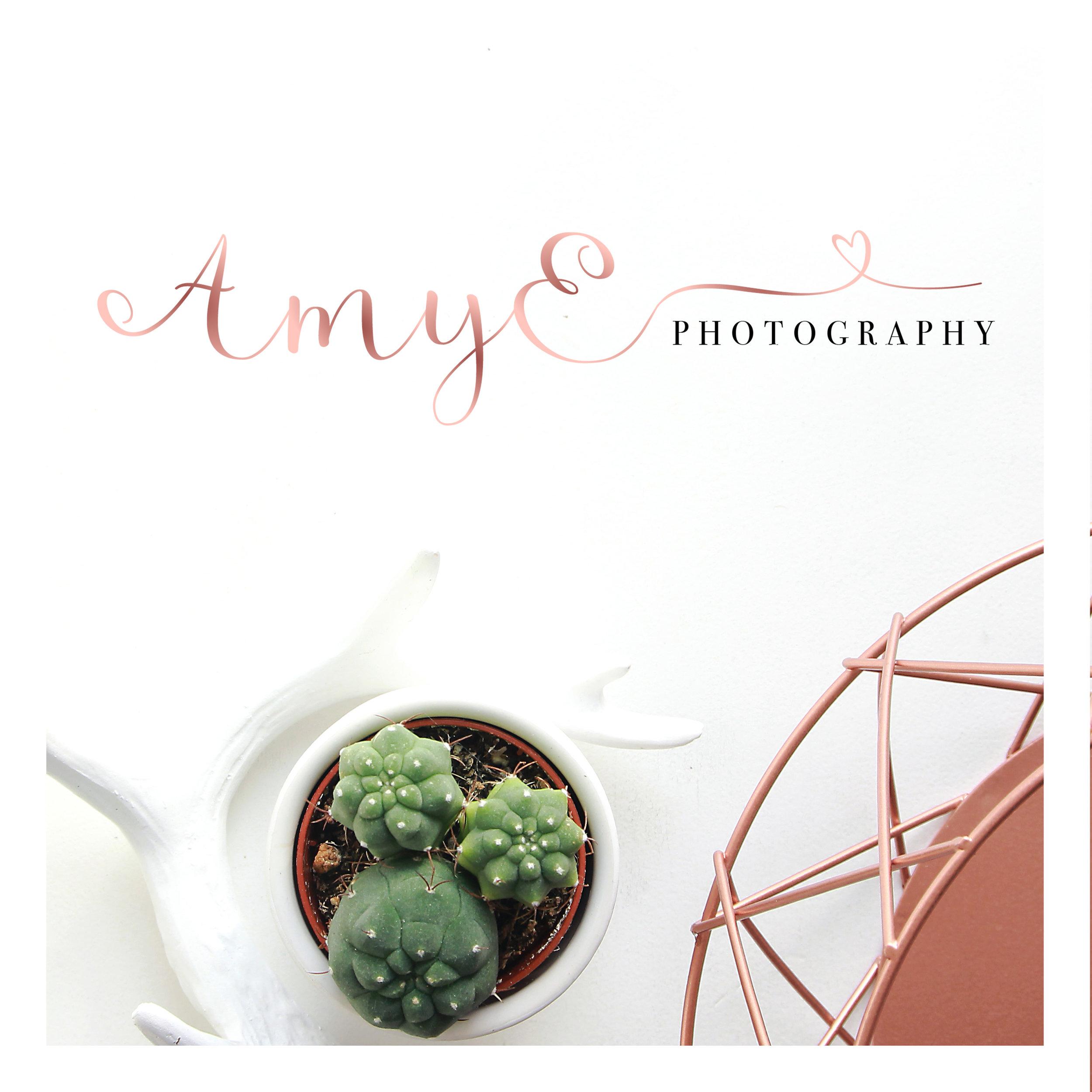 AmyE Logo.jpg