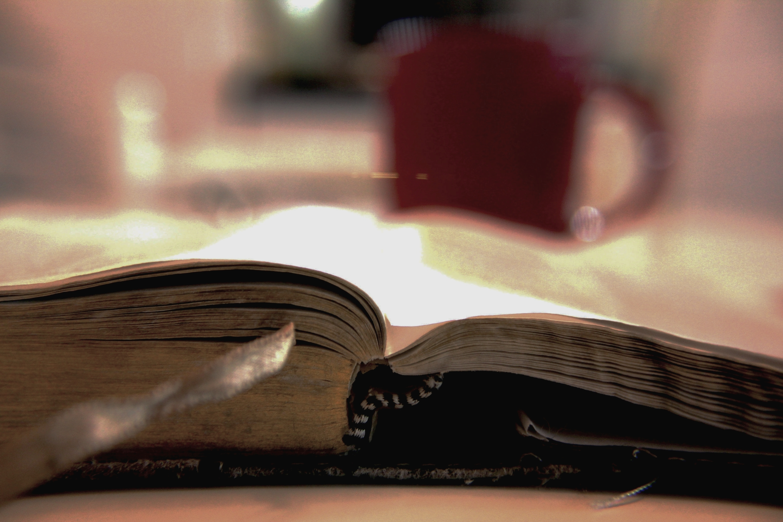 Sunday school -