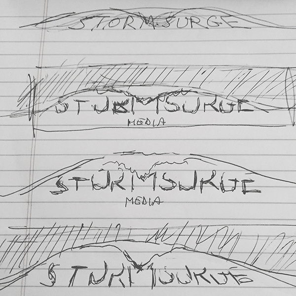Storm Surge Media's founding was committed to paper in February 2009.