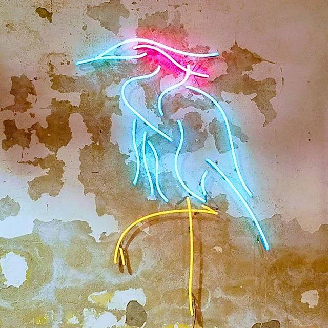 Heron #neon #neonart #madeinkc #troost