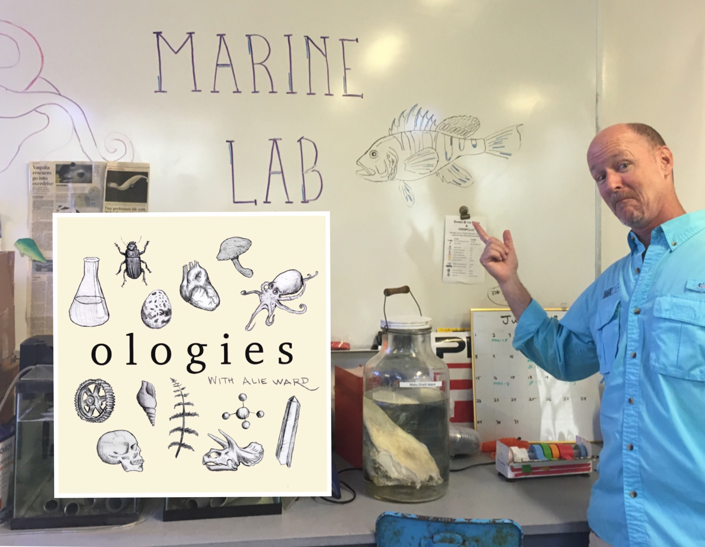 Dr. Chris Lowe_Ologies_Sharks