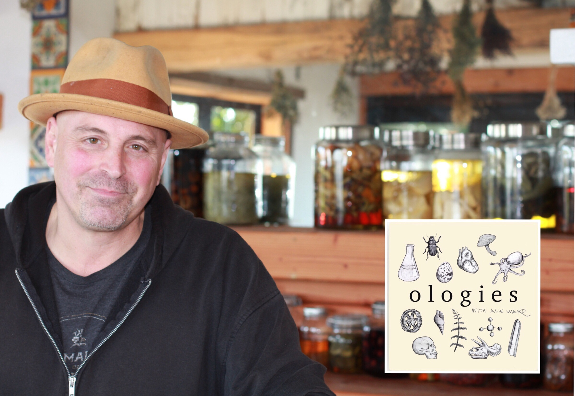 Matthew Biancaniello stands in front of a row of infusing jars in his Malibu bar, Mon-Li.