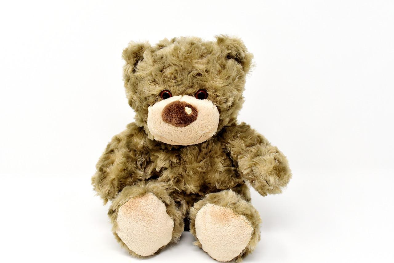 teddy-3122024_1280.jpg