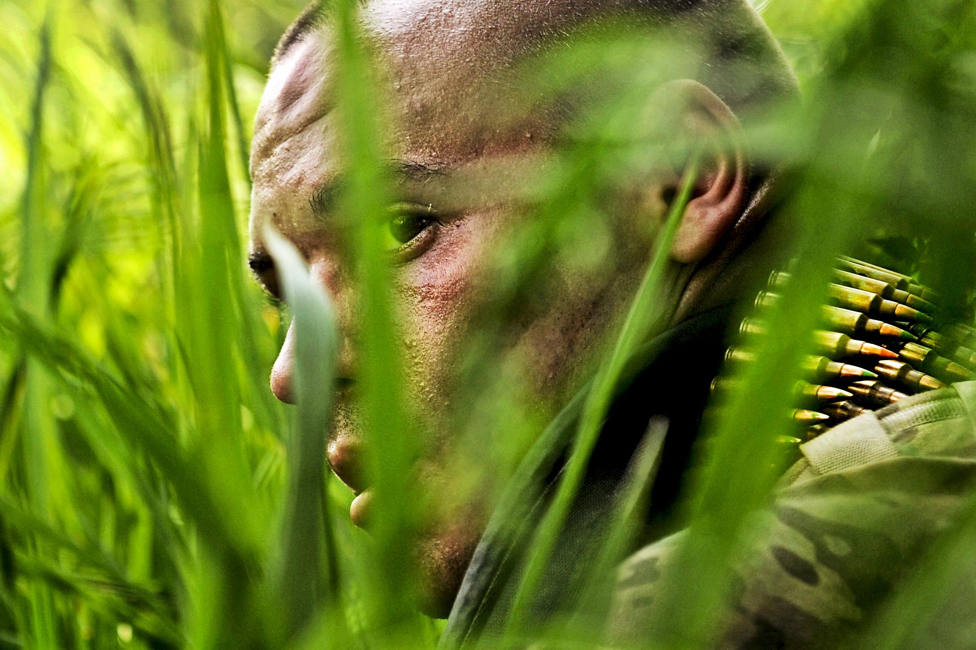 22. in the jungle 2.jpg