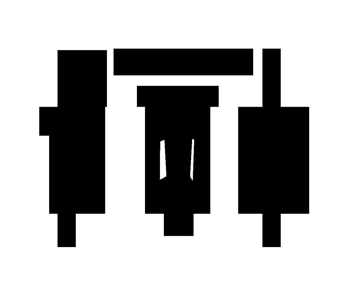 Temple Fit