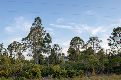Some of our land for sale around Charlotte County, Florida