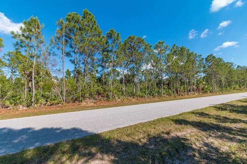 Shelia's Property in Charlotte County, Florida