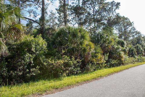 Swartburg Rd, North Port, FL, 34291