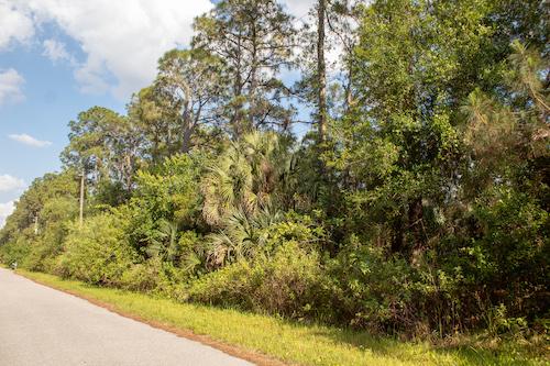 Bartigon Ave, North Port, FL, 34286