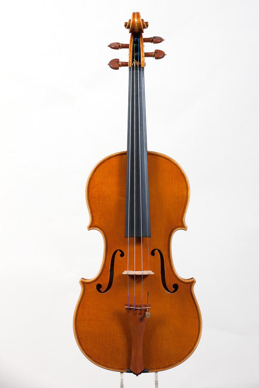 Model Stradivari - 2015