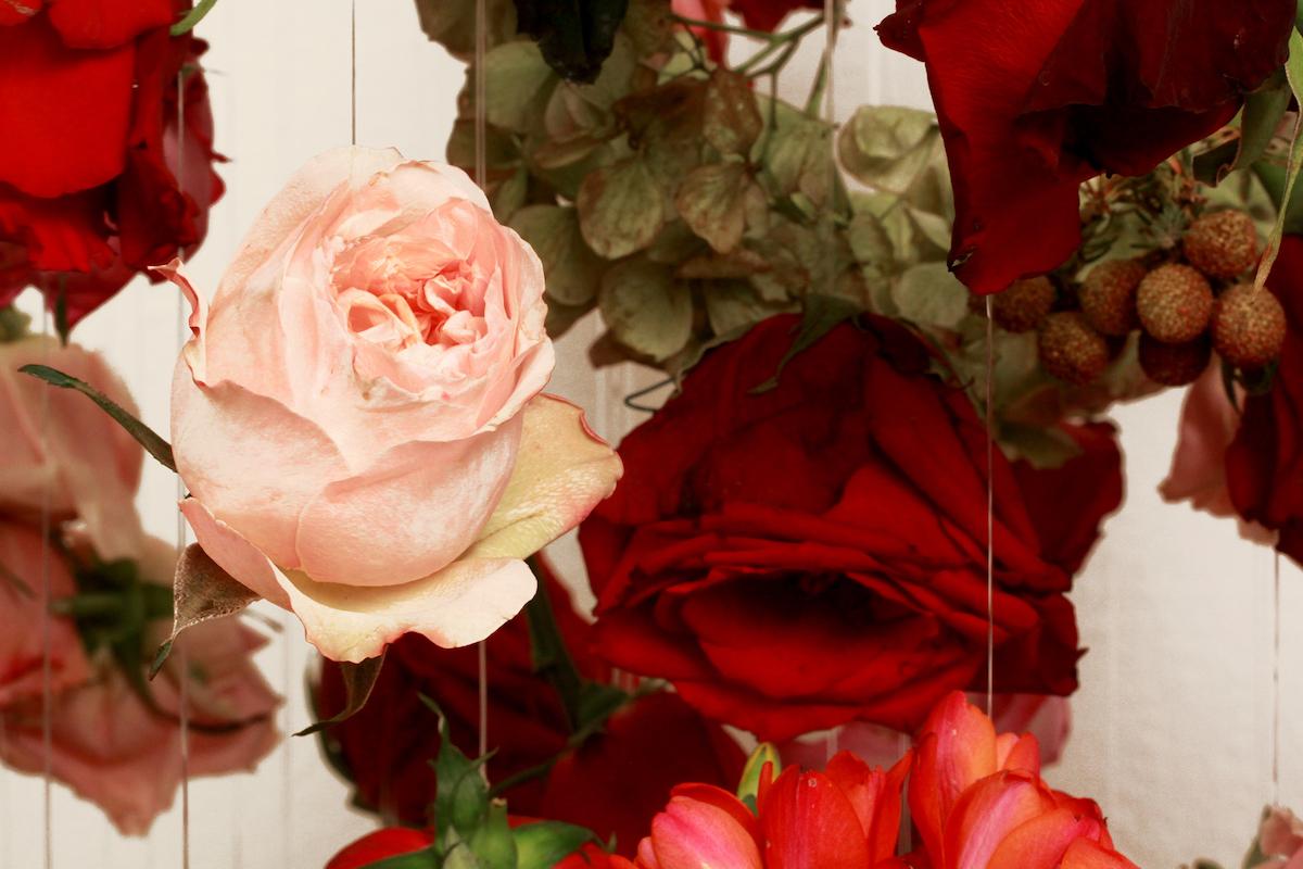 Boom Blooms art and design florists1.jpg