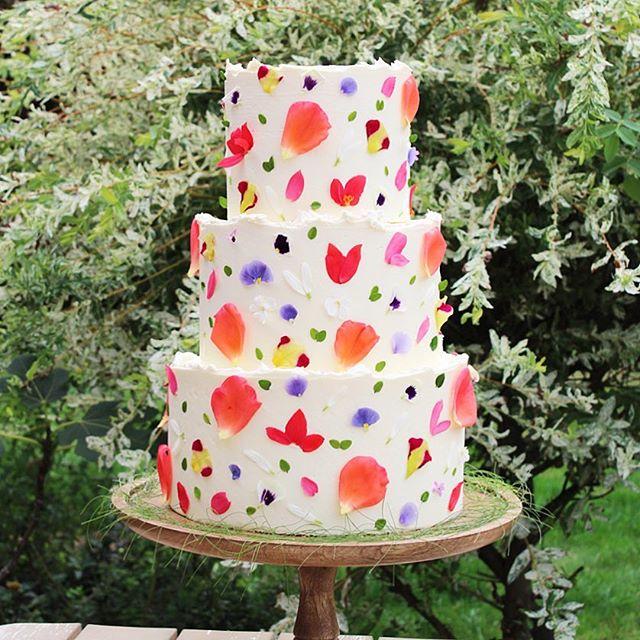 BETH HAXBY CAKES (3).jpg
