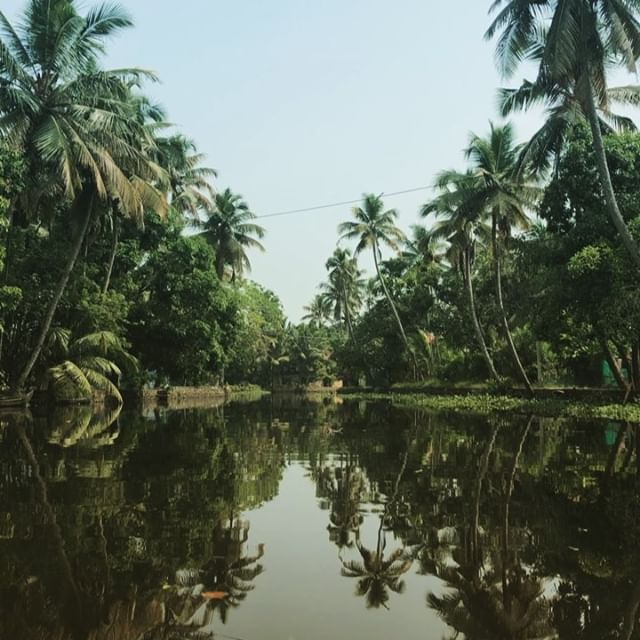 Impressions of Kerala, India #nature #backwaters #kayaking #hiking #backpackers