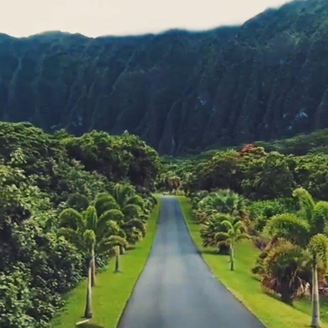 The road: Your road to where you are now. Tell us about it. Write about it. Dance it. Move it. Sing it. Rhyme it. Whatever your pleasure, just SHARE it. #writing #writingworkshop #hawaii #kauai #kauaihawaii #retreat #writingprompts #writingtime #writersofinstagram #writeyourlife #annrandolph #annrandolphkauairetreats #beachretreat #yoga #dance #poetry #hawaiiretreat #heal #thrive PC: @landpluswater
