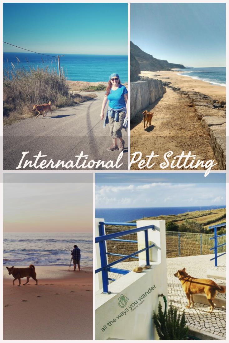 Pet Sitting (1).jpg