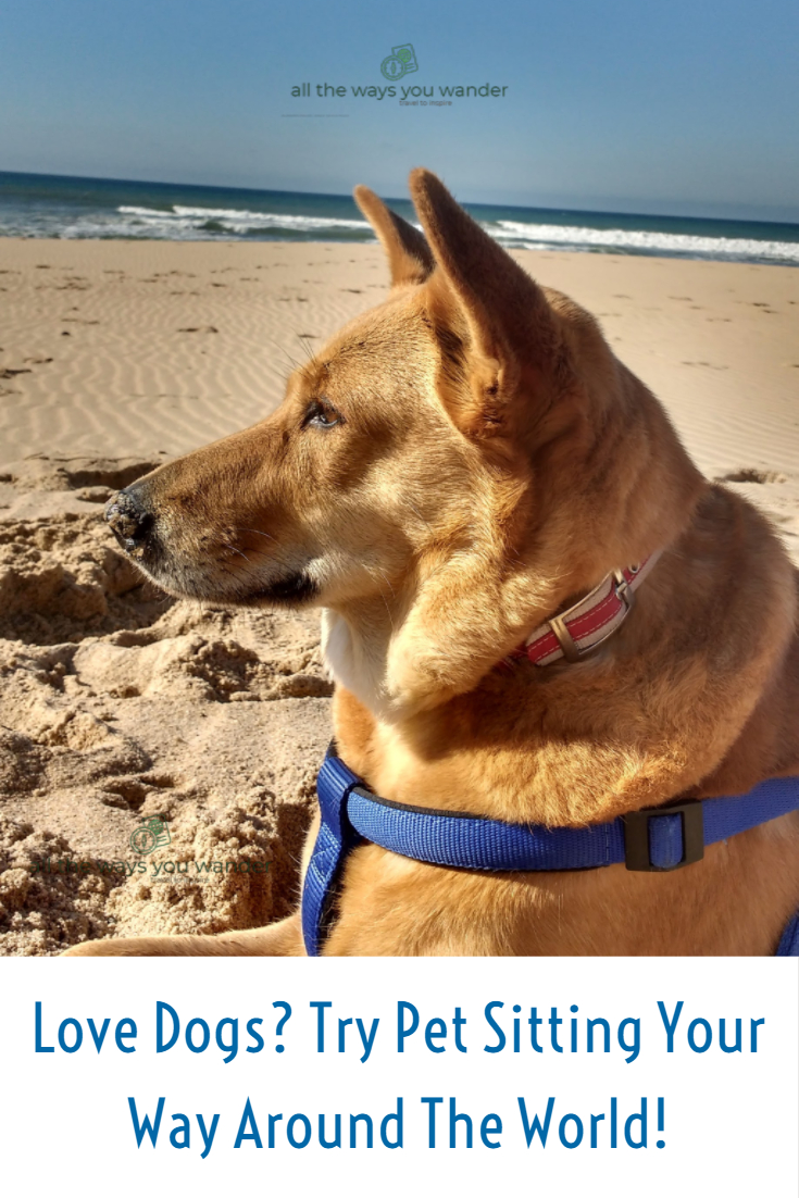 Love Dogs_ Try Pet Sitting Your Way Around The World!.jpg