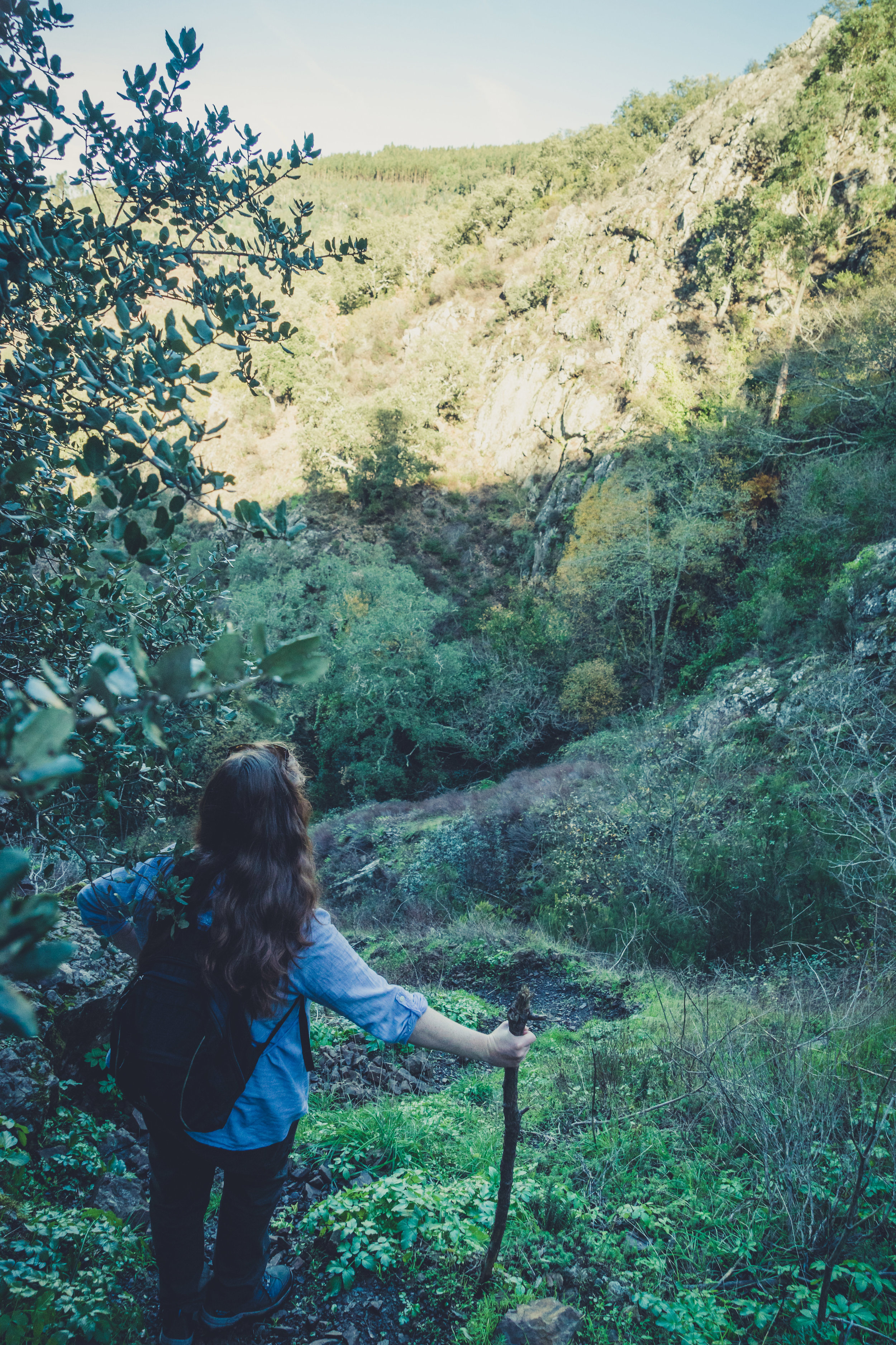 barbelote waterfall monchique portugal. hiking trail. walking trail. evil trees. lots of trees. cork trees. cant find the waterfall.jpg